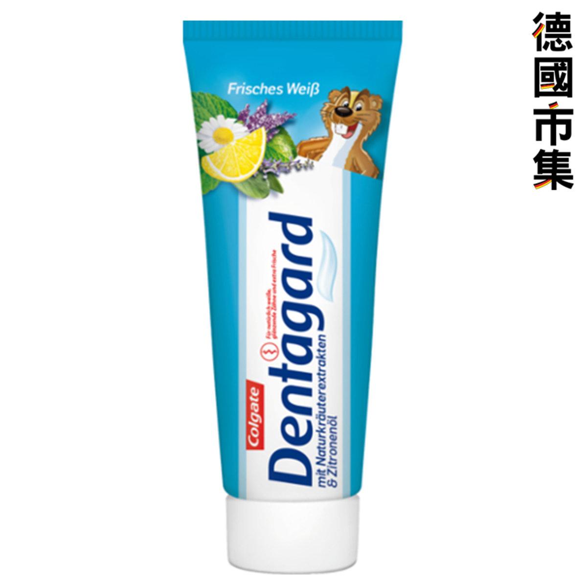 德國 Dentaguard 草本防護牙膏 75ml【市集世界 - 德國市集】