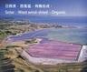 Organic New Zealand Flaky Sea Salt x 2packs