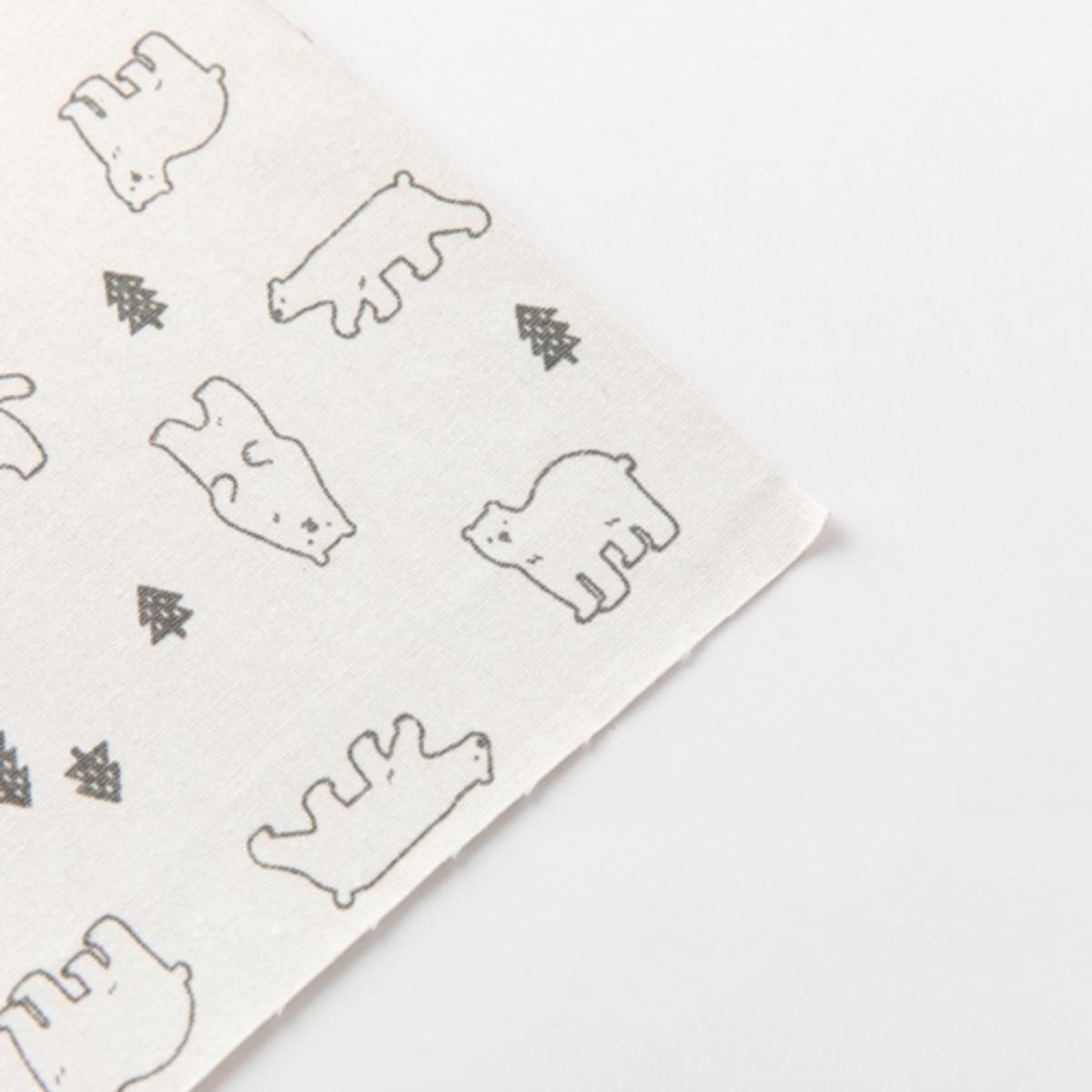 棉貼紙 - 北極熊 | 韓國直送