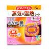 日本暖宮貼 5片入 (新舊包裝隨機發貨) (4901301245496)