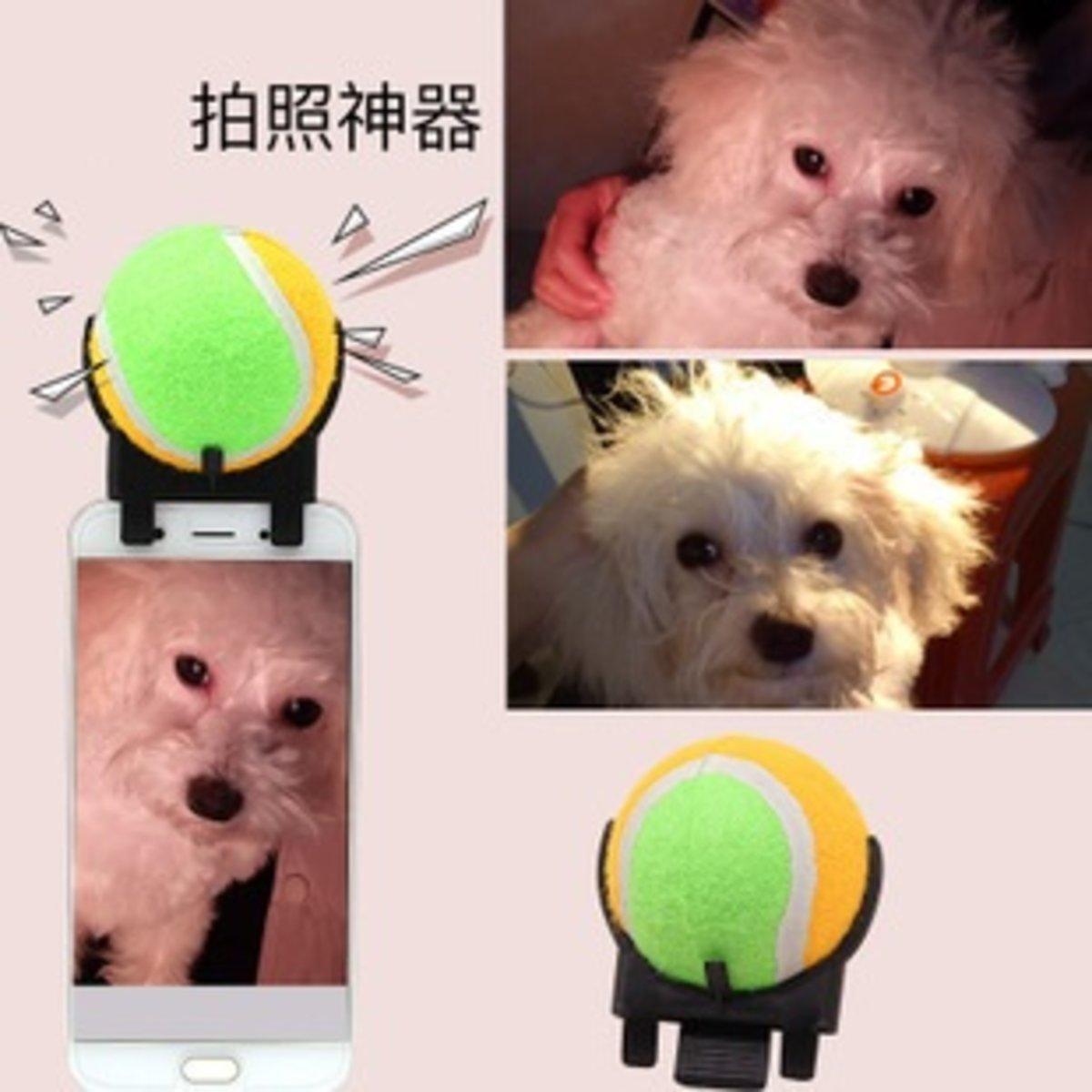 Pet selfie tools with tennis ball