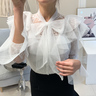 Shurelier Lace Ribbon See-Through Blouse