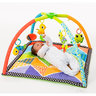 Pond Pals Activity Gym and Playmat (Deluxe)