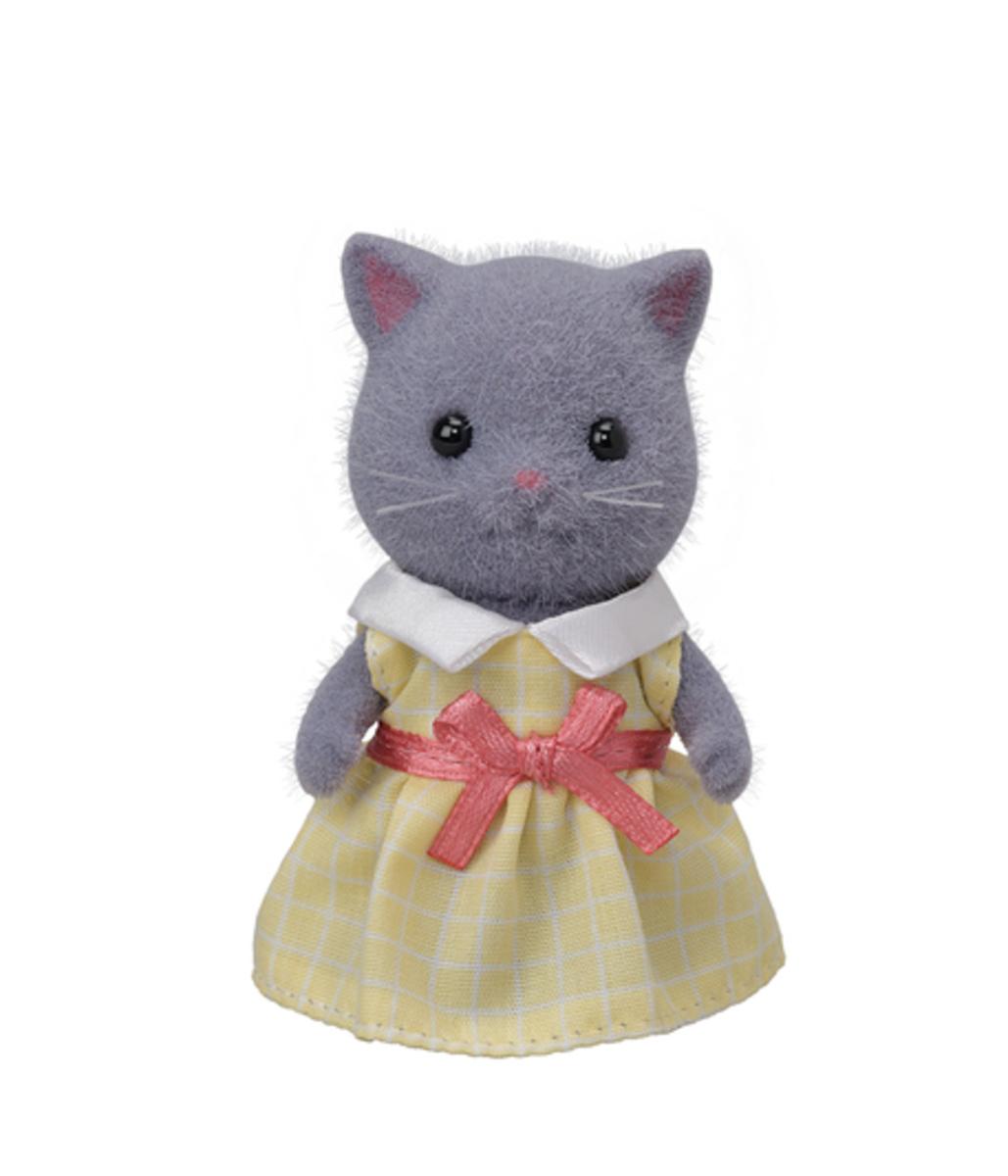 14054-波斯貓姐姐