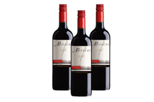 Mapachi Cabernet Sauvignon-2018 x 3 bottles
