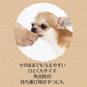 Material As It Is Freeze Dried Apple Dog Treats 25g  (exp20190930)