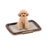 Mesh Tray Dog Toilet Plus S (Brown) (577828)