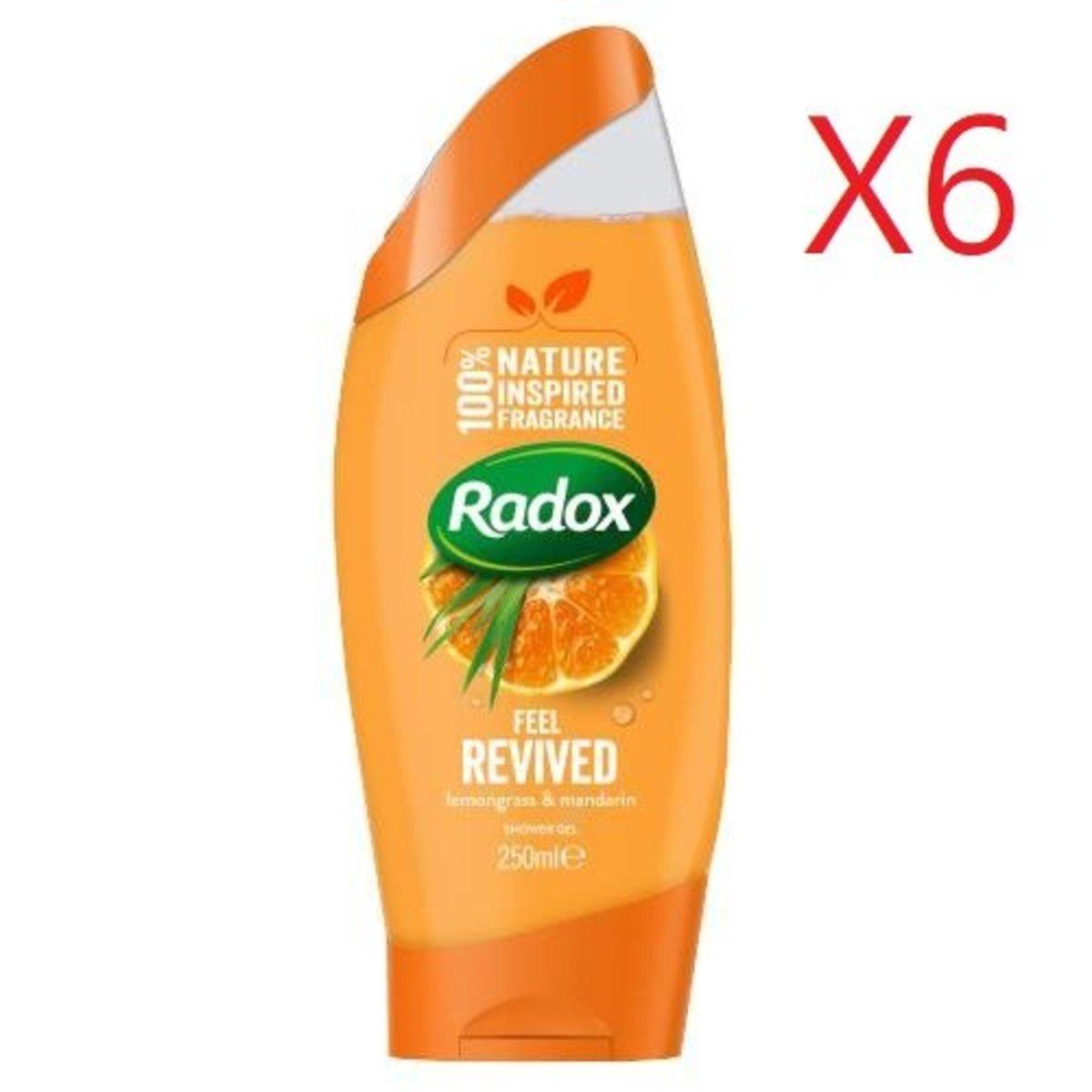100% 天然沐浴露 250ml - 檸檬草+香橙X6支 [平行進口產品]