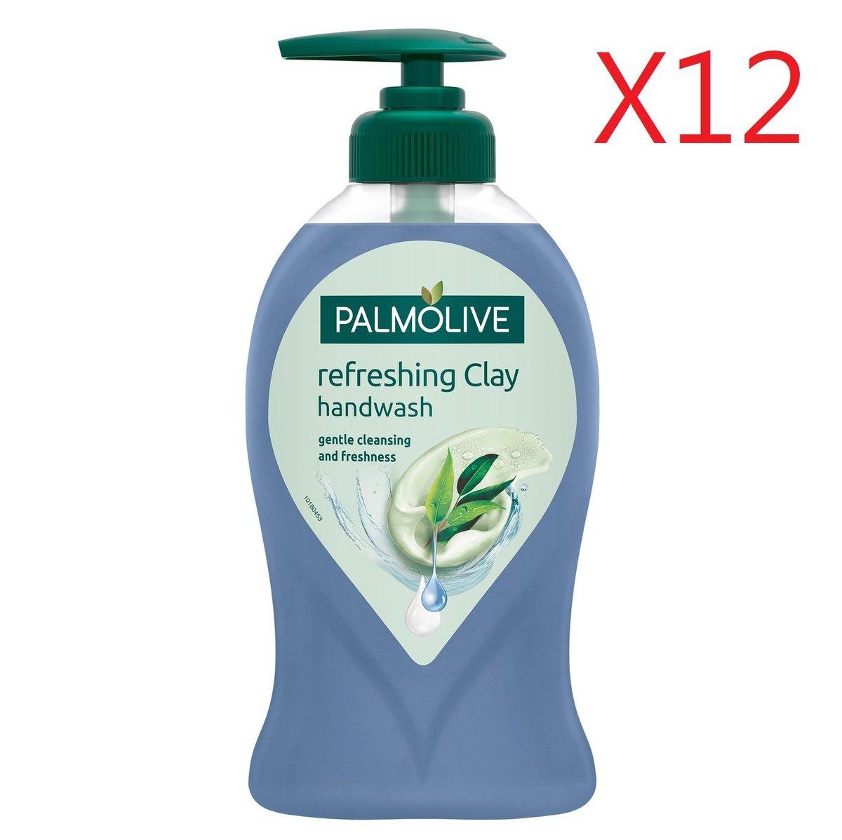 Palomoive Hand Wash 250ml - Eucalyptus X 12pcs  [Parallel Import Product]