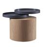 "18.9"" ASH with Dark Grey COLOR Round Coffee table"