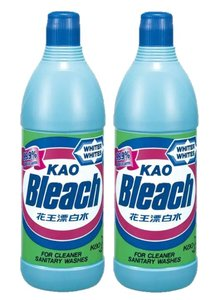 Bleach 600ml x 2pcs