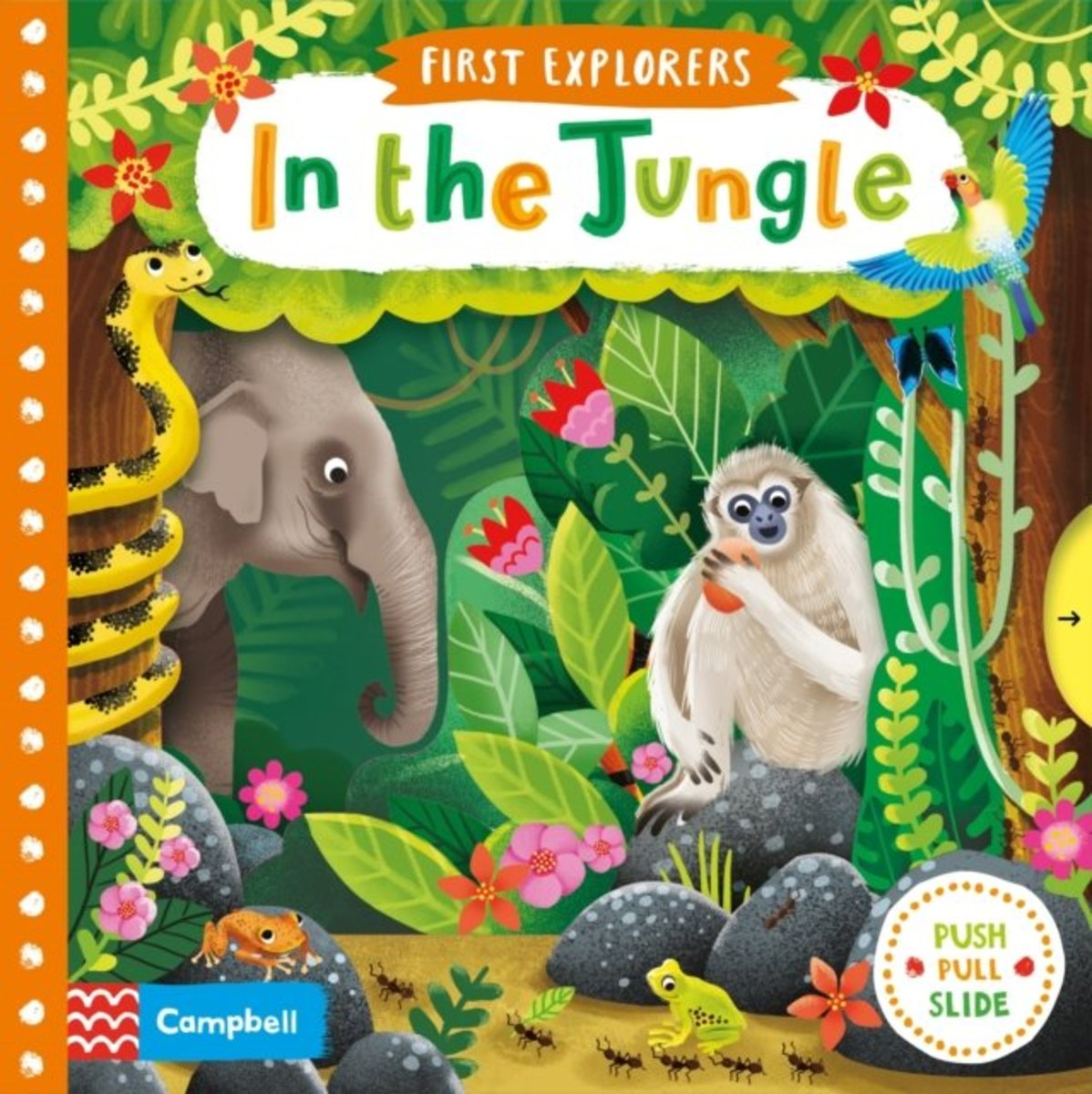 First Explorers: In the Jungle