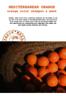 地中海甜橙專業染髮鎖色洗髮水-橙色