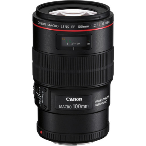 Canon EF 100mm f/2.8L Macro IS USM Lens (平行進口)