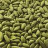 Kyoto Matcha Premium Pili Nuts (1 can)