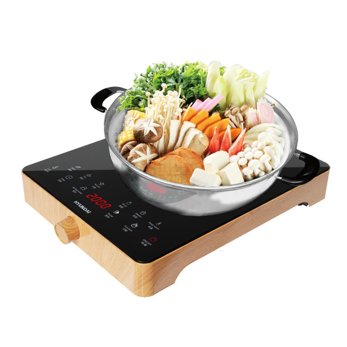 2000W Induction Cooker - HY-G16