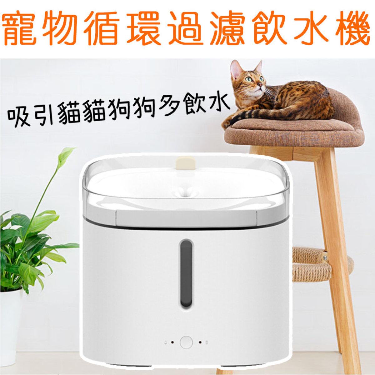 KITTEN & PUPPY Pet Water Purifier Dispenser