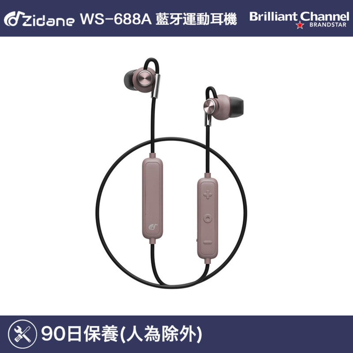 WS-688A 藍牙運動耳機 (褐色)