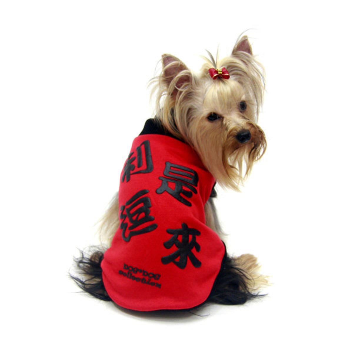 Reversible T-shirt Dog Clothes