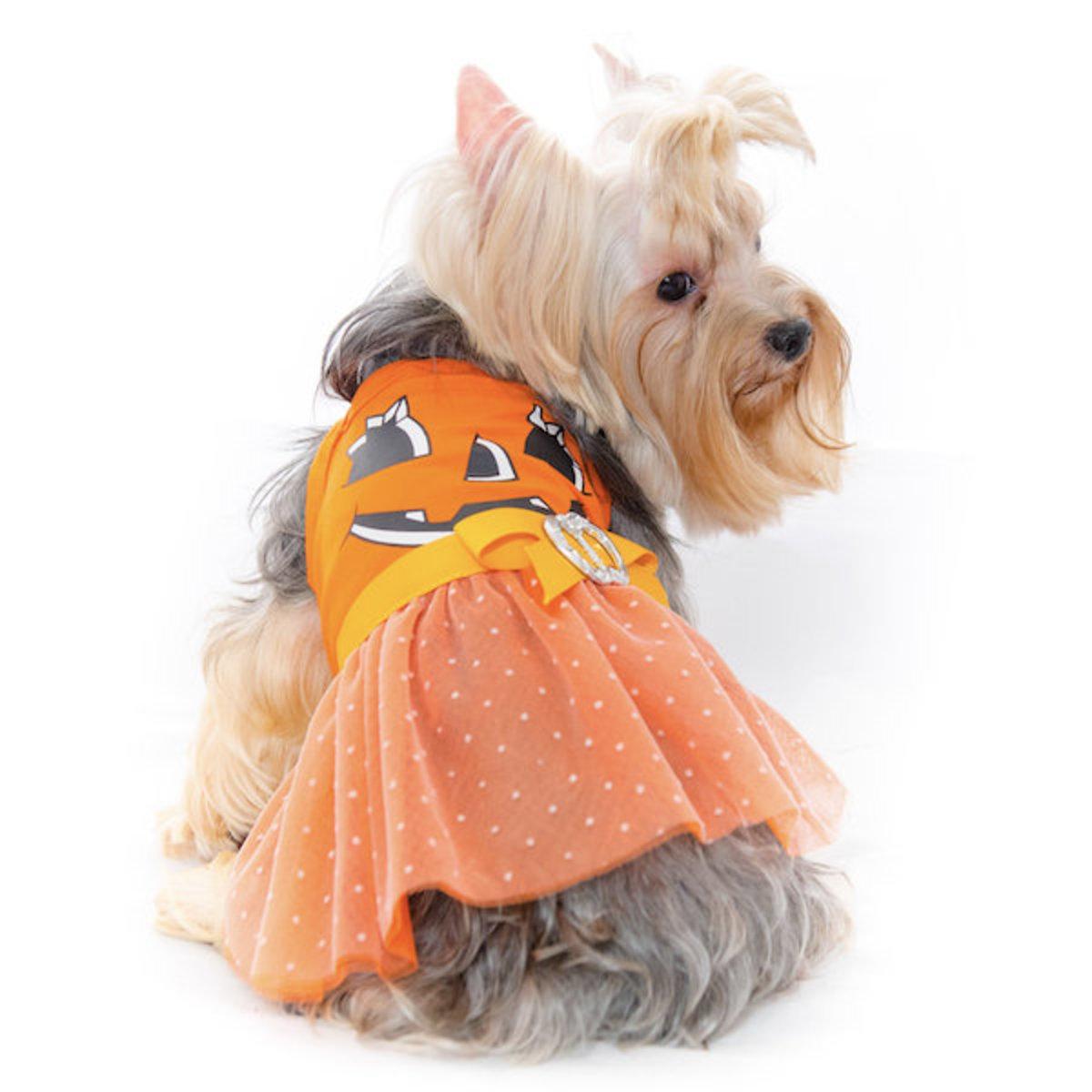 Pam Dress  Halloween Dog Dress Dog Clothes