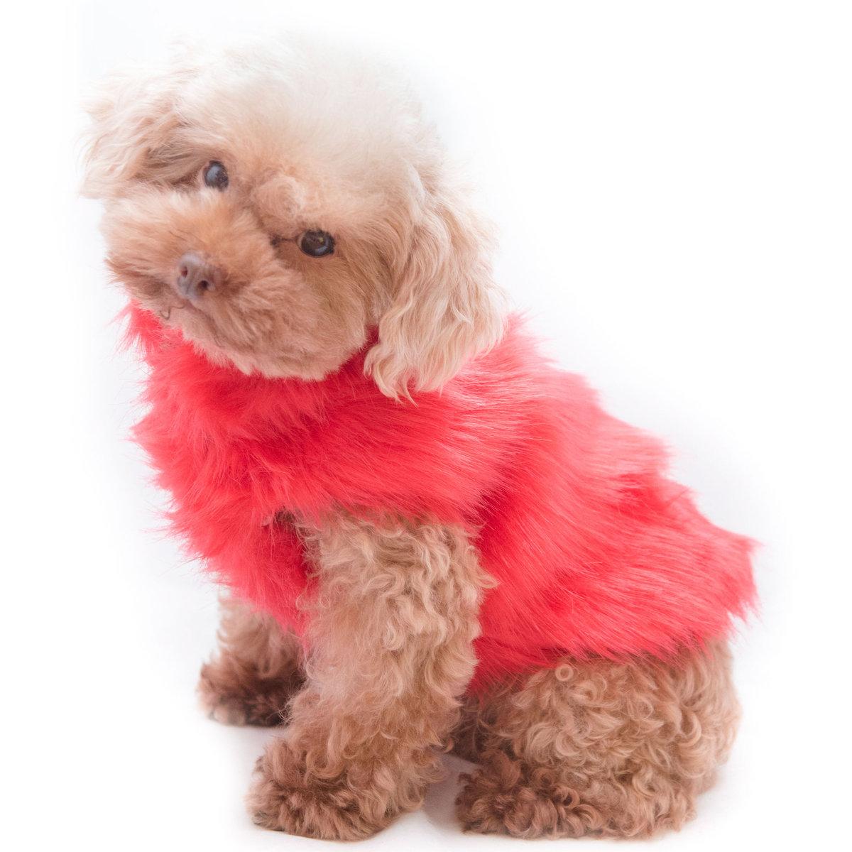 Carissa Fur Coat   Dog Coat