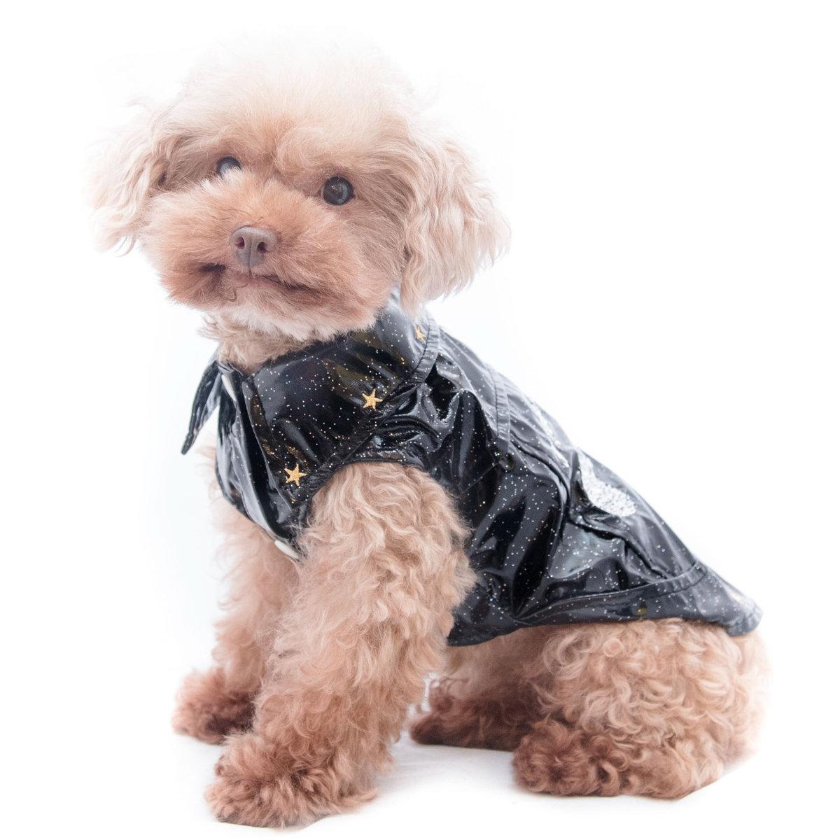 型格光身衫  寵物時裝   貓狗衫