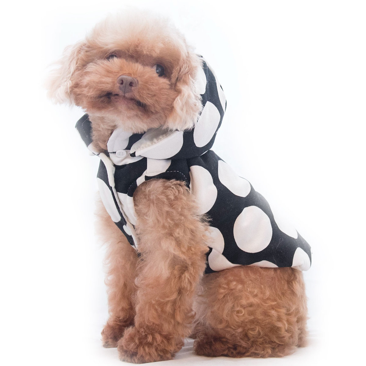 Olga Detachable Hooded Vest   Pet Apparel