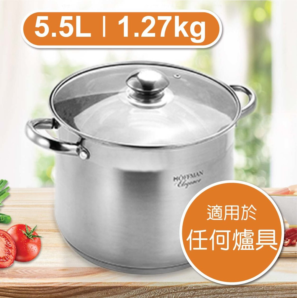 5.5L Stainless Steel Stewpot with Glass Lid (21cm) - silver