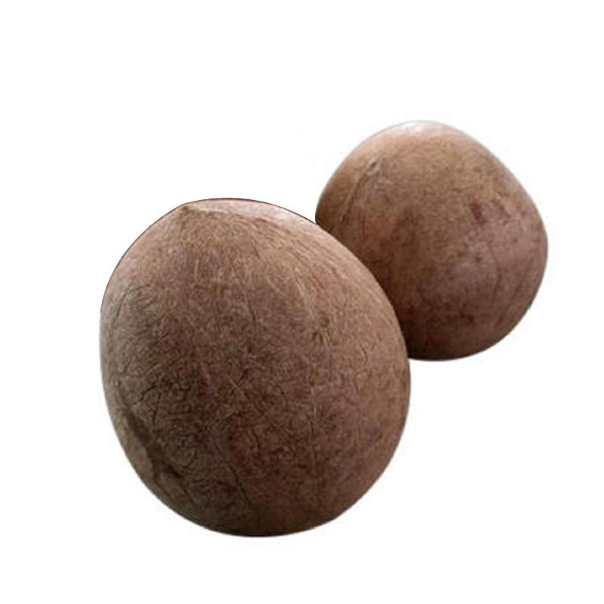 印度椰子(椰子核) x 2