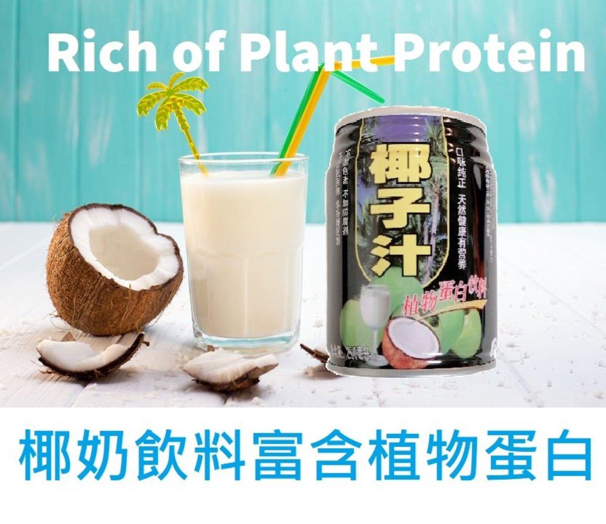 Bingo Coconut Milk Drinks (250ml x 3bottles)