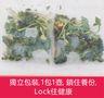 清咳潤喉茶(心火熱咳)8小包