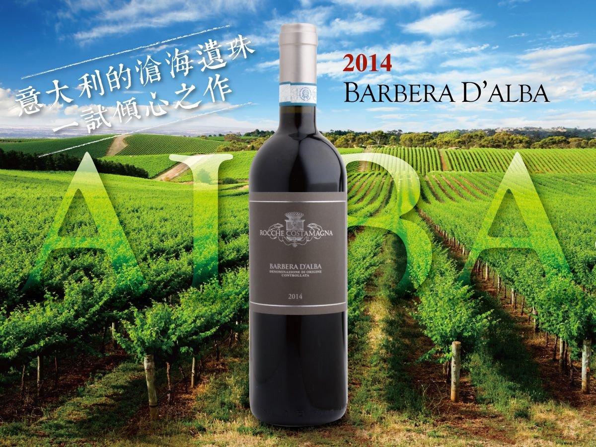 【意大利經典葡萄酒】 滄海遺珠 BARBERA D'ALBA