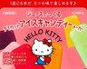 Japan Sanrio Cute Home-made DIY Ice Lolly 6-Cavity Mould - Hello Kitty