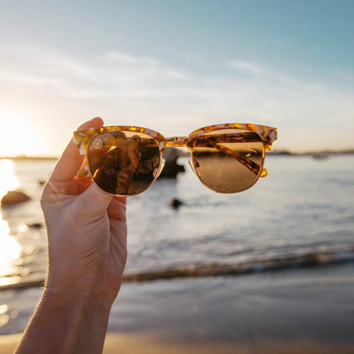 Cardiff // Gold Mamba Polarized Sunglasses