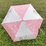 迪士尼-折疊雨傘 (Minnie + Daisy) (迪士尼許可產品)