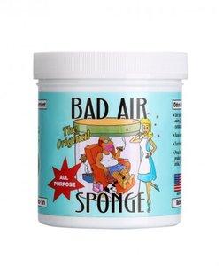 Bad Air Sponge 強力除甲醛 環保空氣淨化劑400g(平行進口)