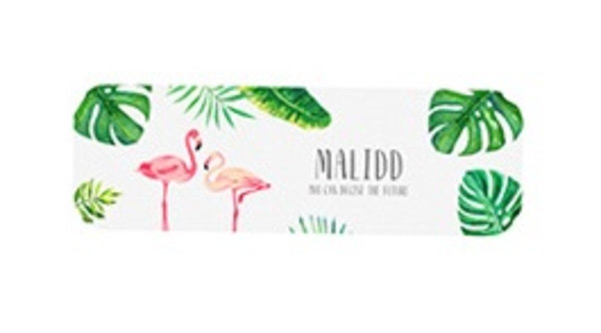 Diatom mud wash coaster-A-Flamingo