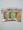 陶瓷瓜刨-綠/橙/粉紅