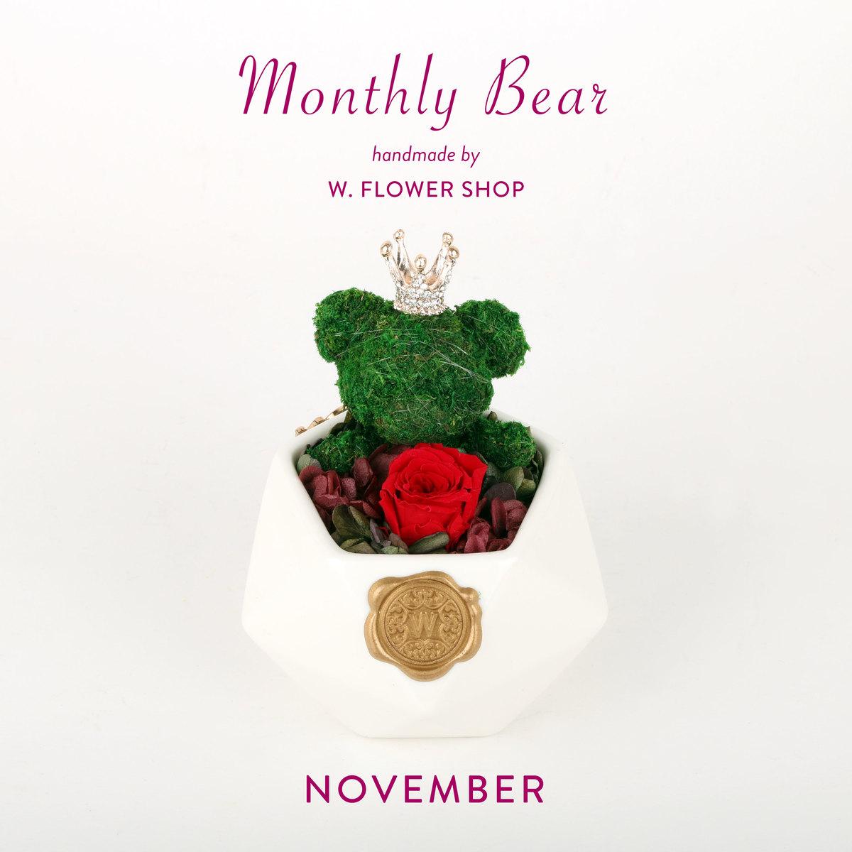 MONTHLY BEAR - November