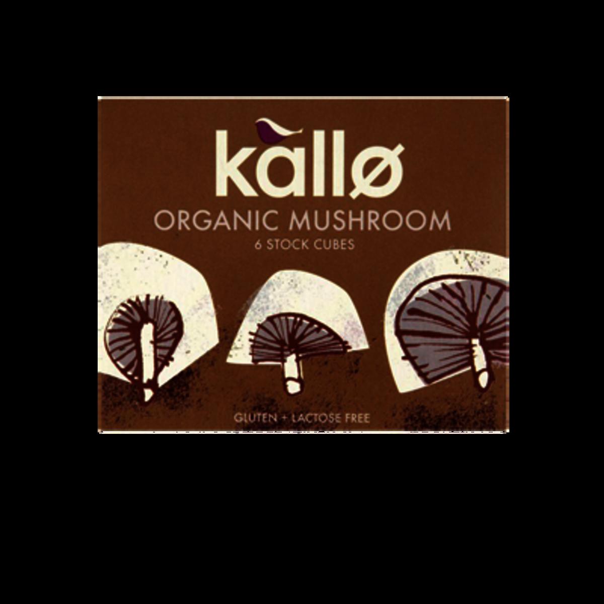 有機蘑菇調味粉粒