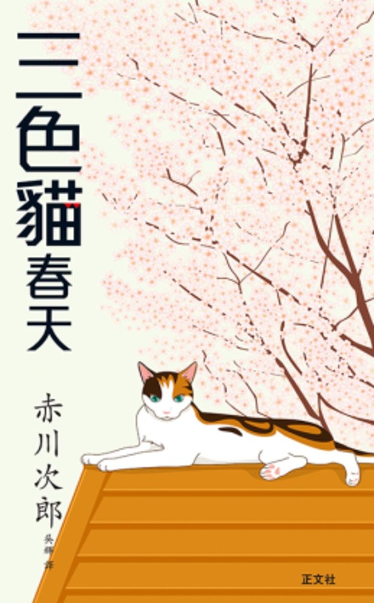 三色貓春天