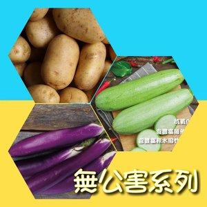 《贈品》無公害蔬菜套裝 (翠玉瓜、茄瓜、薯仔) (共重約1600-2000克)