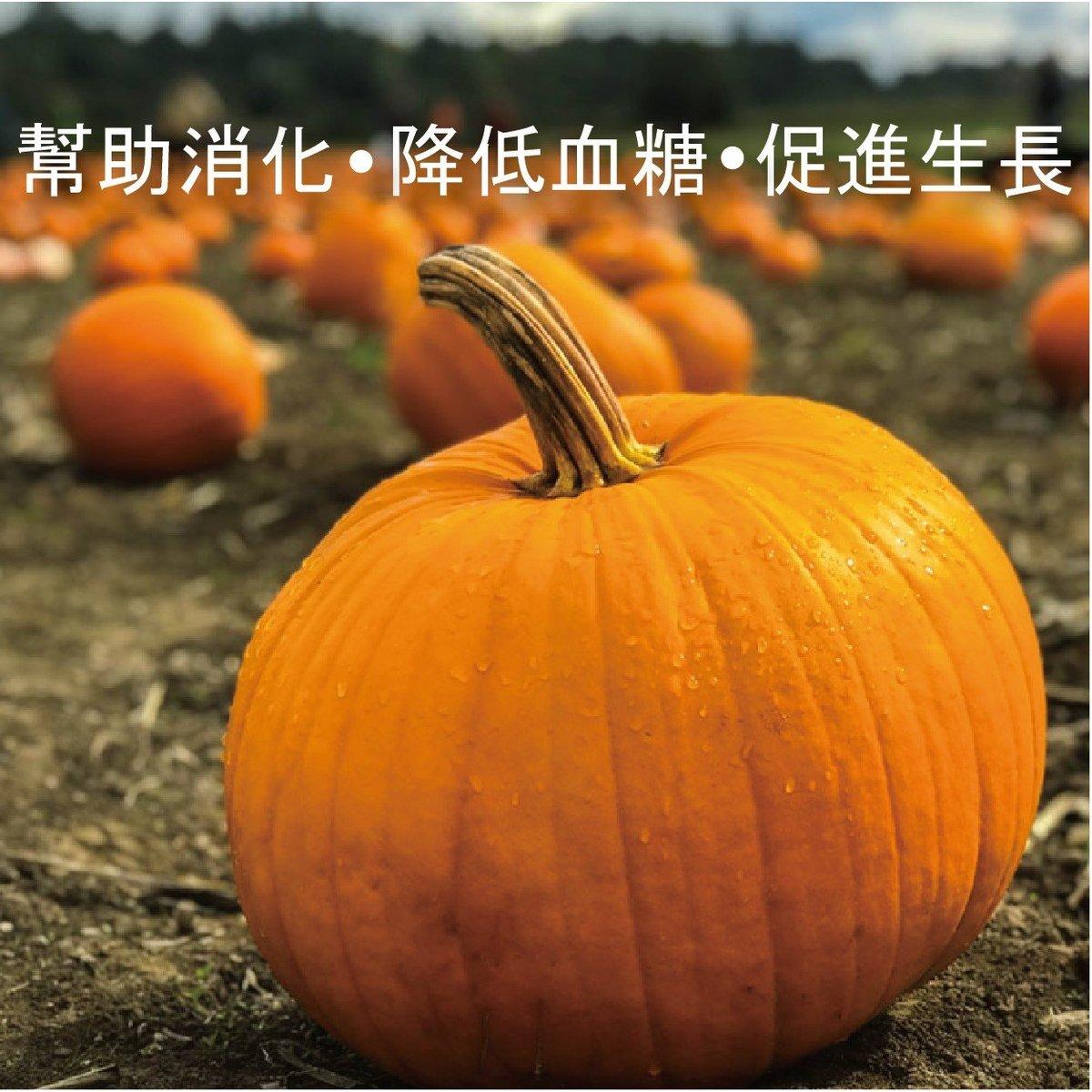 金南瓜 1個 (1.2-1.5K) (Golden Nugget)
