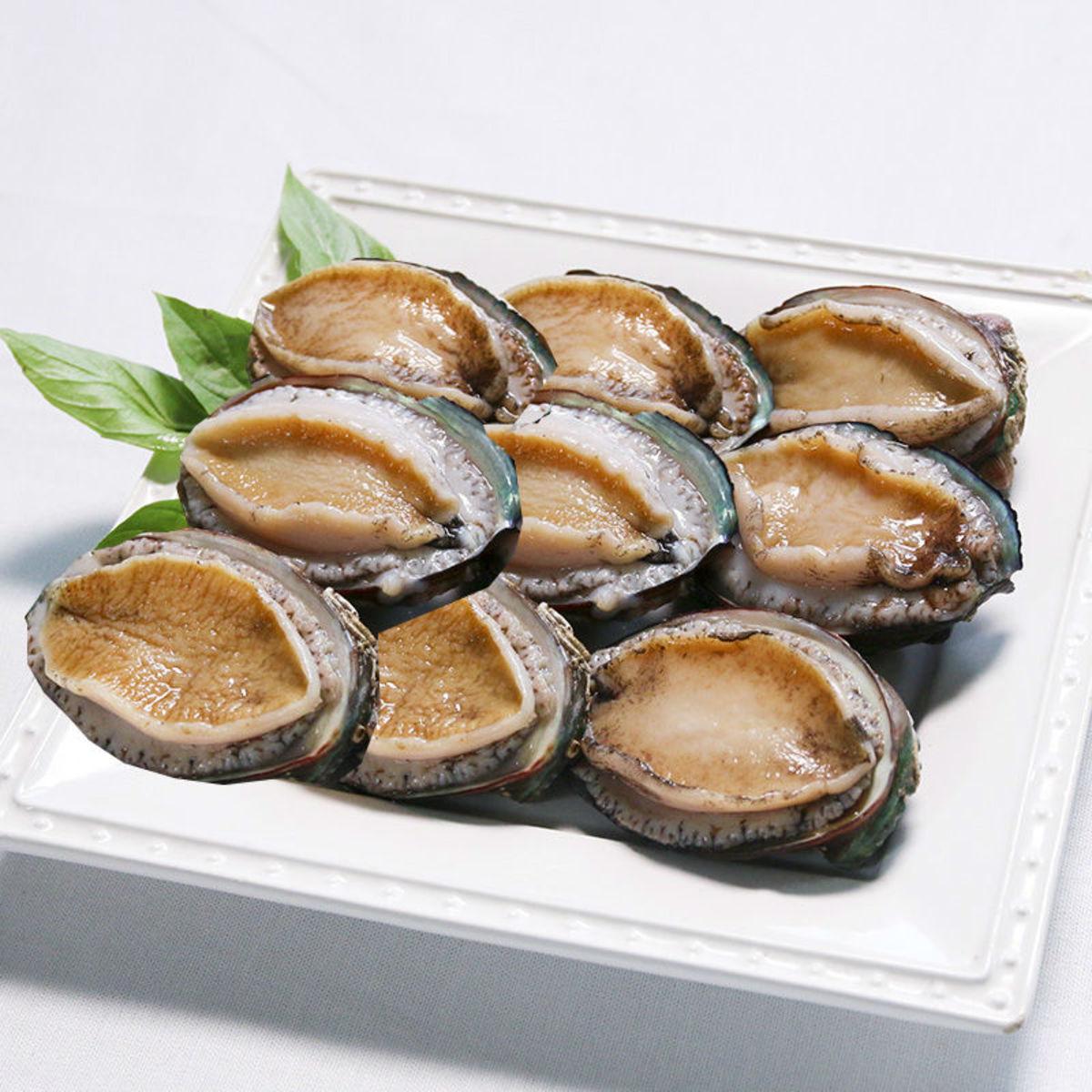 Fresh Live Whole Abalone  (9 pcs)