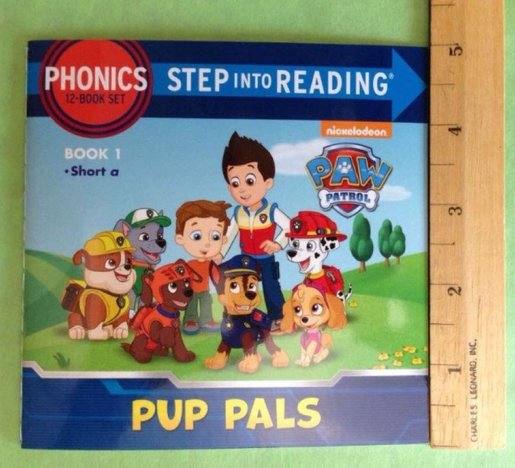 Personalised Paw Patrol Birthday Greeting Card /& Envelope 658