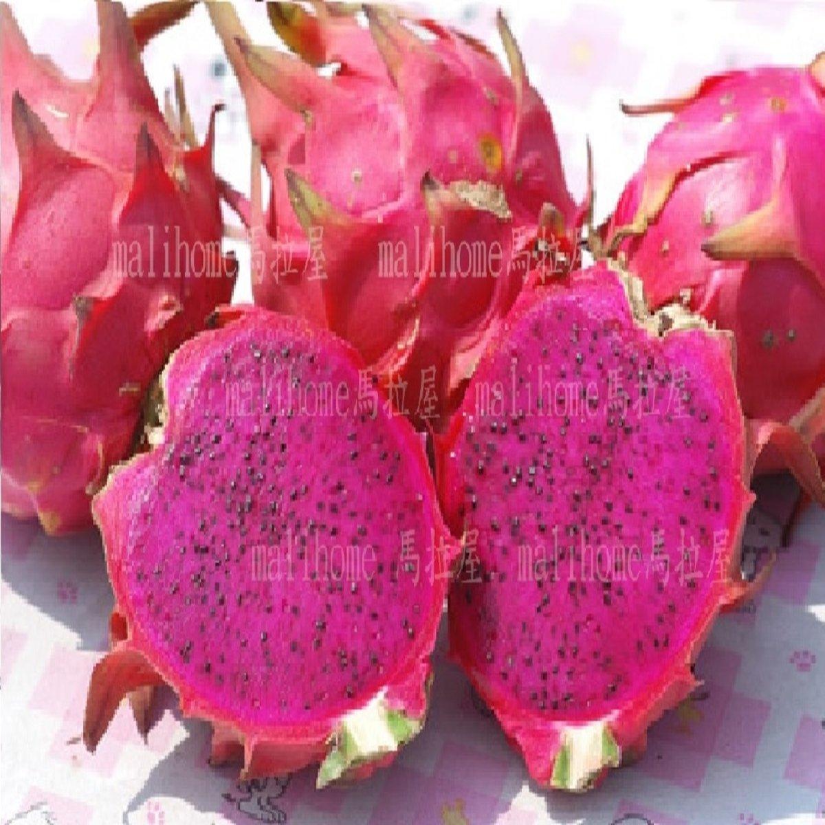MaliHome Dragon Fruit(10pcs)