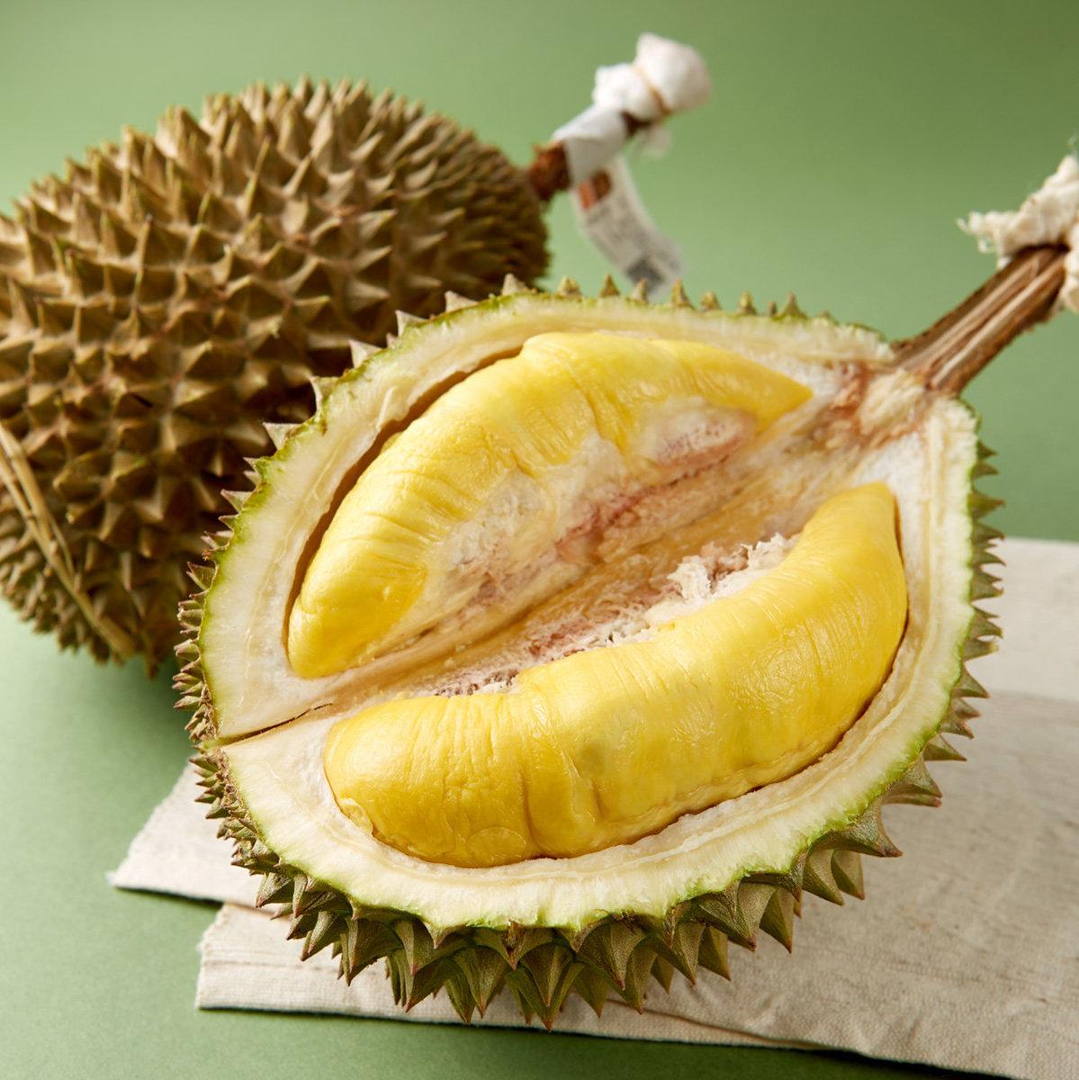 MaliHome Musang King Durian