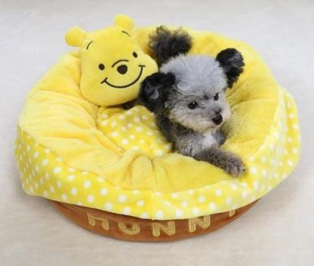 【PET PARADISE】Pets Bed (POOH'S HONEY POT)