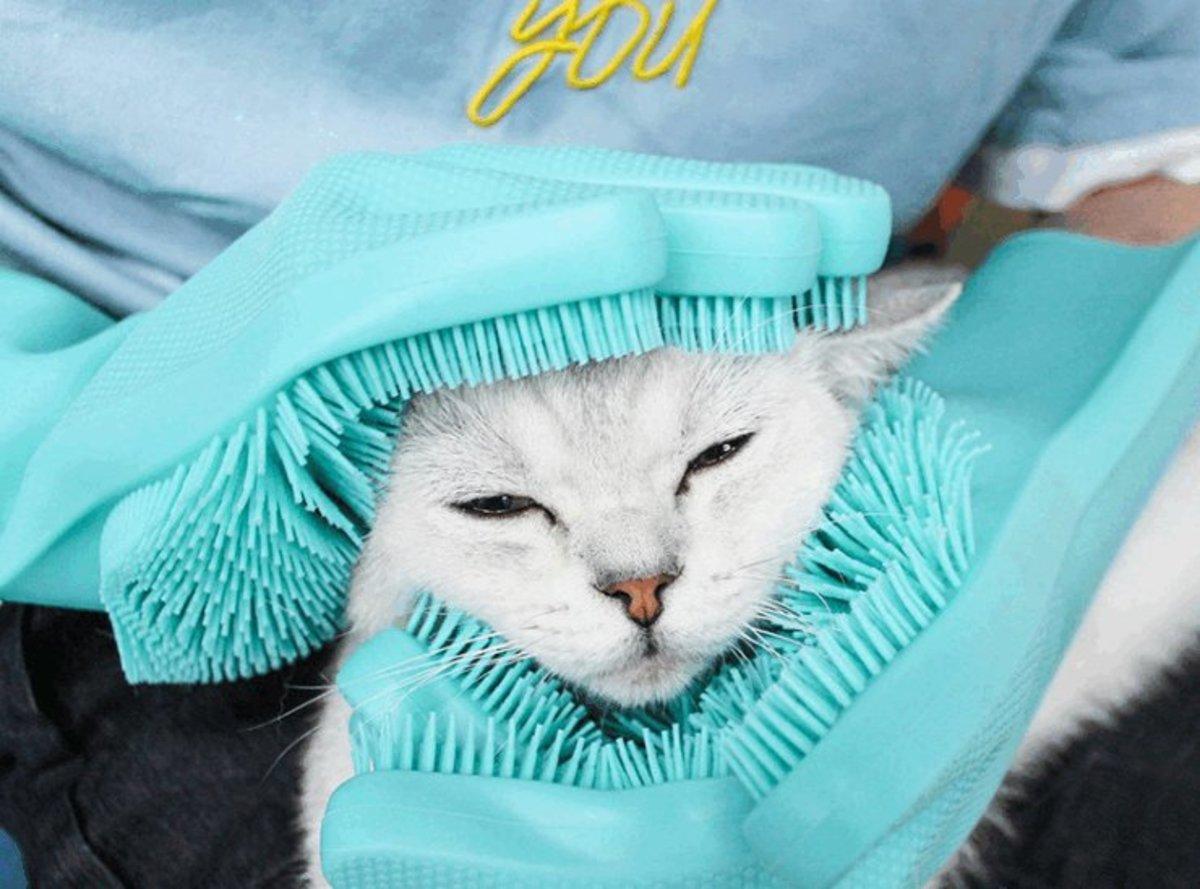 貓狗按摩防抓沖涼手套連刷(藍色款)