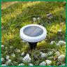 Solar-Powered LED Ring Ground Light